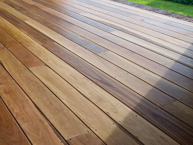 Spotted Gum 01