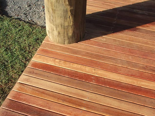 Spotted Gum 06