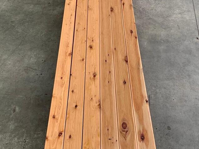 Cypress Pine 03
